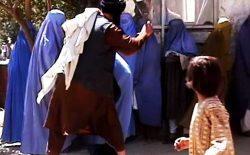 طرح طالبان برای دختران مجرد بالای ۱۵ سال